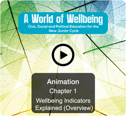 Wellbeing Indicators Explained (Overview)